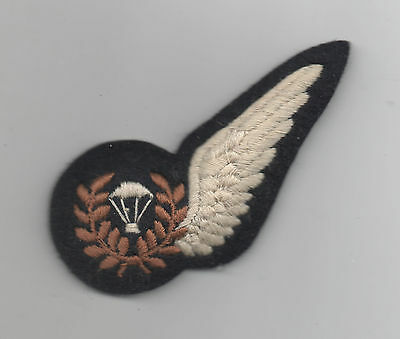 WW2 Royal Air Force Parachute Training Instructor halfwings