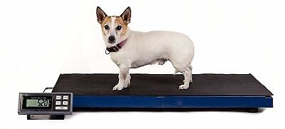 Animal Weighing Scale 180kg x 0.05kg LCVS180 Veterinary Dog Greyhound Livestock