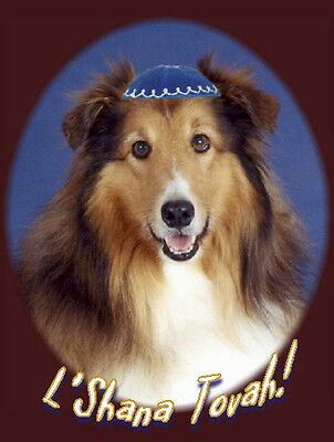 Pet Jewish New Year Cards  Dog: Rosh Hashanah Sheltie