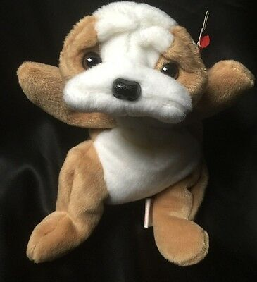 TY Beanie Baby New Wrinkles The Bull Dog Puppy Retired MWMT