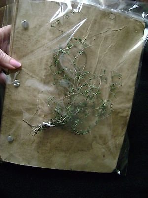 PAGAN PAGES 200 hand aged bound paper BLACK MAGIC book of shadows filler OCCULT