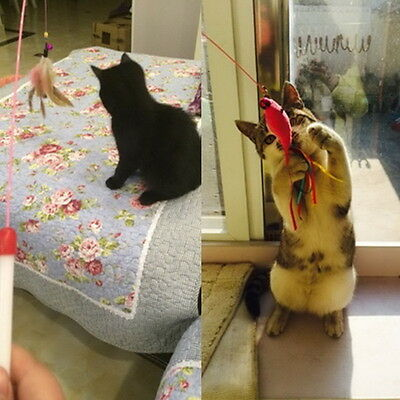 Kitten Cat Pet Toy Wire Chaser Wand Teaser Feather With Bell Beads Play Fun AO