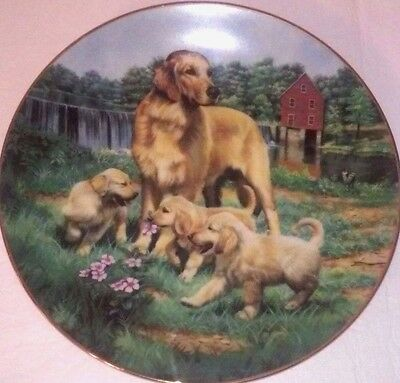 Golden Retrievers Robert Christie Classic Sporting Dogs Puppy Playing Plate COA