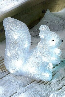 Indoor Outdoor Acrylic White LED Light Up Squirrel Christmas Garden Decoration