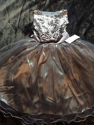 Pewter Sequin Sparkle Dress With Net Skirt Brand New Age 5/6