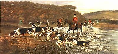 Wonderful Large Hunting Hounds Traditional Vintage print from DOUGLAS engraving