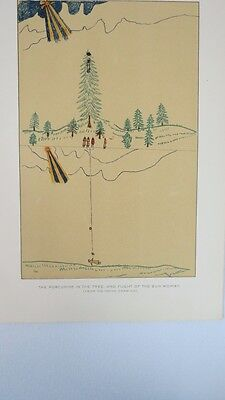 Antique Native American Indian PORCUPINE TREE SUN WOMAN Litho Print 1890