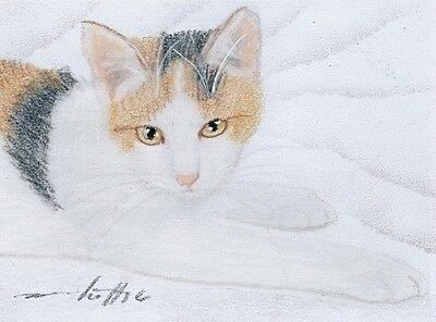 ACEO original pastel drawing ginger calico cat by Anna Hoff