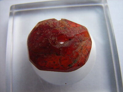 1 Ancient Celtic Amber Bead Celts VERY RARE! TOP !!