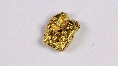 Alaskan-Yukon BC Natural Gold Nugget 0.31 Grams Genuine From Special Lot