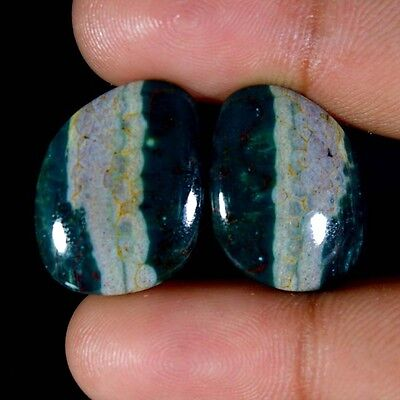 29.40Cts 100% Natural Ocean jasper Maching Pair Cabochon Loose Gemstones