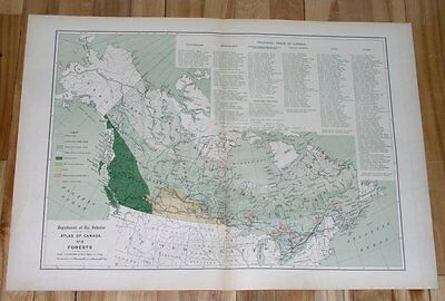 1906 Original Antique Map Of The Forests / Boreal Forests Taiga Canada