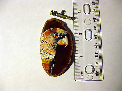 dusky lory pin/necklace on agate