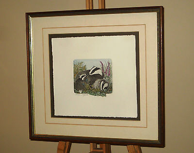Framed & Signed Limited Edition Etching Print of a Badger & Her Young 122/350