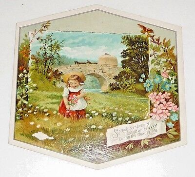Antique Vintage Victorian Trade Card Woolson Spice Co Lion Coffee Daisies