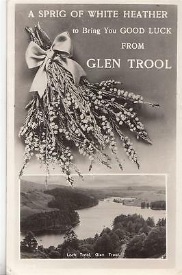 T73.Vintage Postcard.Good Luck from Glen Trool. White Heather.