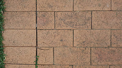 Red Clay Pavers