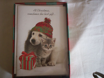 New Box Of Christmas Cards Featuring Cute Cat And Dog On Front