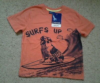 Boys Surfs Up T/Shirt  2-3 Years