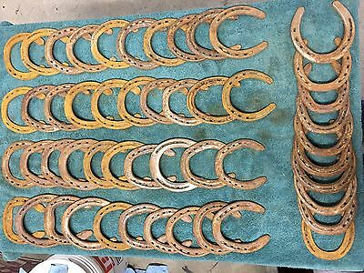 50 USED STEEL HORSESHOES Straight, No Nails, No Clips, NO BORIUM! Free Shipping!