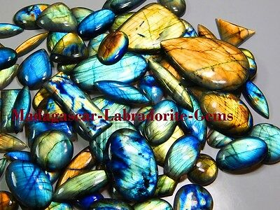 255Ct Top Quality Natural Multi Fire Labradorite Wholesale Lot Cabochon Gemstone