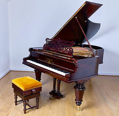 Bechstein Grand Piano Model V