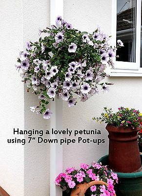 """Stocking Filler! Offer! 6 Plant Pot Holders To Hang 6"""" Pots On Drain Pipes/posts"""