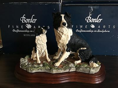 """Border Fine Arts """"The Understudy"""" Collie sheep dog limited ed. L150"""
