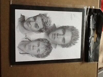 RARE Mini BUSTED artwork picture drawing Jonathan wood McBUSTED Matt Charlie