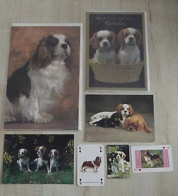 CAVALIER KING CHARLES SPANIEL Postcards,Greeting,Playing cards,dog collection