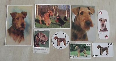 AIREDALE terrier postcards, playing cards, vintage print dog collection