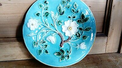 majolica plate wild roses unmarked