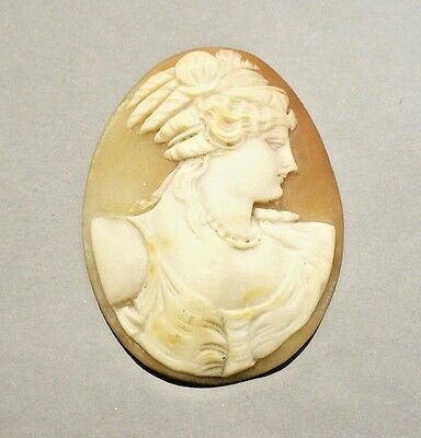 Large hand carved shell cameo portrait Vintage!