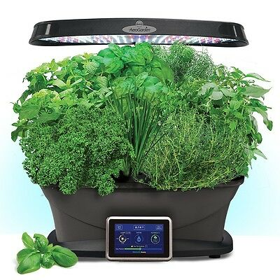Miracle-Gro AeroGarden Bounty with Red Heirloom Tomato Pod Kit