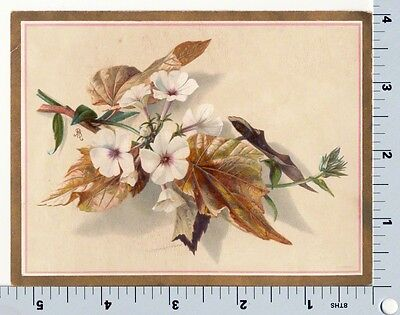 Victorian Greeting Card | Meissner & Buch | Flowers and Fall Leaves