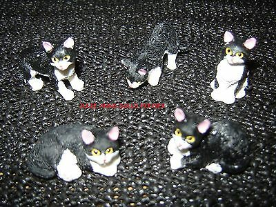 DOLLS HOUSE PET CAT BLACK AND WHITE CAT MINIATURE 12th SCALE NEW JULIE ANNS