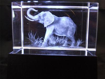 Solid Glass Crystal Laser Block and White Light Box Elephant.