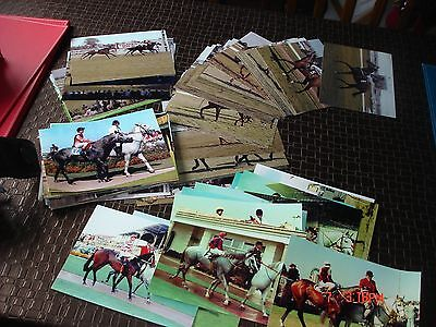 turf photos from qld and adel carnival time early eighties