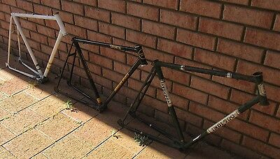 11 classic bicycle frames and 13 front forks