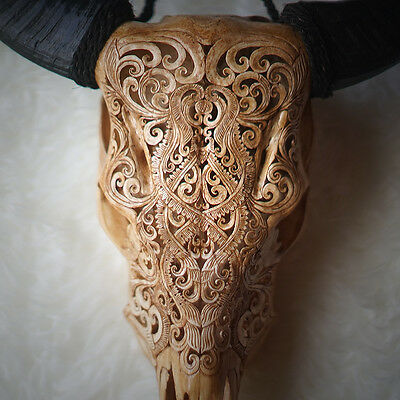 HAND CARVED COW SKULL & HORNS Taxidermy antlers bull longhorns, Unique Gift