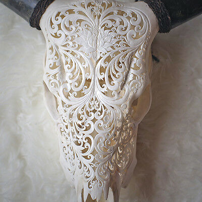 SALE ON, CARVED COW SKULL & HORNS Taxidermy antlers bull longhorns, Unique Gift