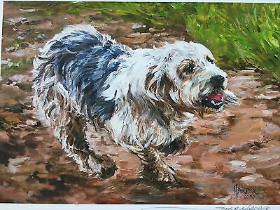 Grande Basset Griffon Vendeen Dog Sale Of Unmounted Prints