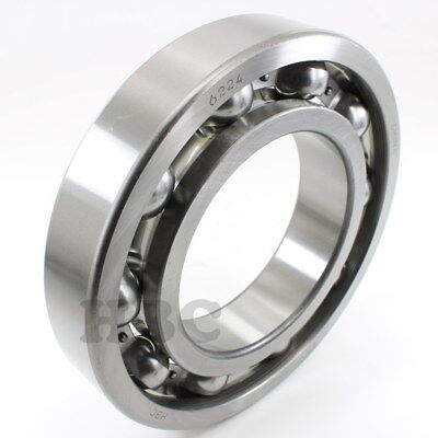 Radial Ball Bearing 6224 Open Light Oil