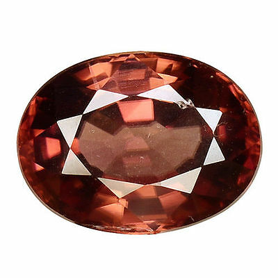 1.585 Cts Tremendous Stunning Luster Brown Natural Zircon Oval Loose Gemstones