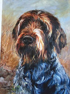 German Wire-Haired Pointer Dog Sale Of Unmounted Prints