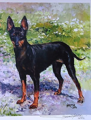 English Toy Terrier Dog Sale Of Unmounted Prints