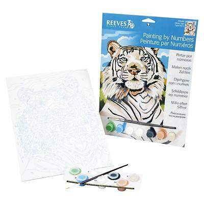 Reeves Painting By Numbers - Various Sets to choose from