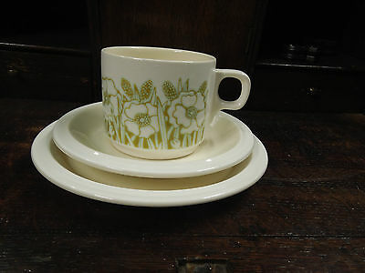 Vintage Hornsea Fleur Cup and Saucer (Treo) set- Made in England