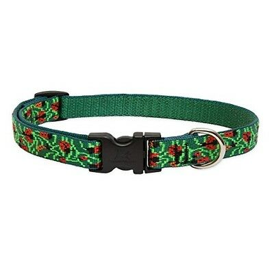 Lupine 3/4 Inch Beetlemania Adjustable Dog Collar for Small to Medium Dogs