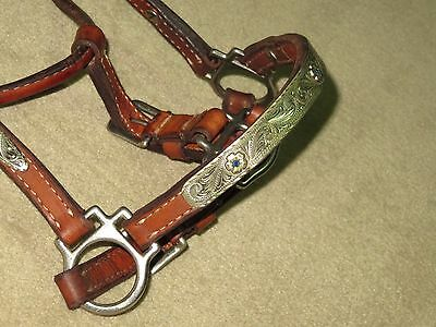 GUC~Beautiful VINTAGE CONGRESS LEATHER Med Oil Show Halter~SILVER & BLUE STONES!